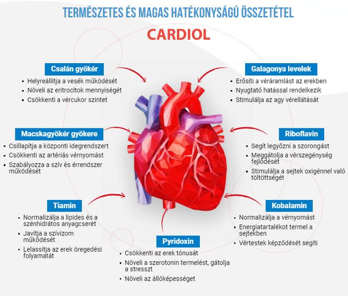hogyan lehet megerősíteni a magas vérnyomásban szenvedő erek falát