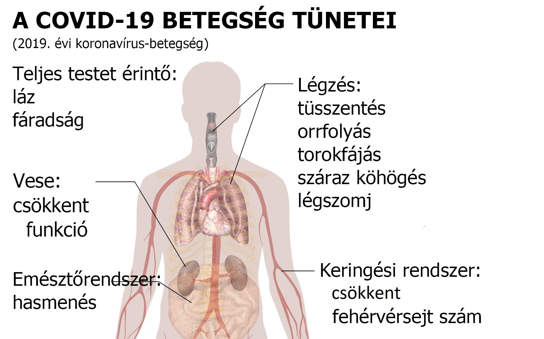 magas vérnyomás jód kezelése a gyermekek magas vérnyomásának leírása