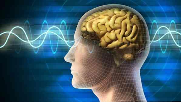 magas vérnyomás és emberi tudat