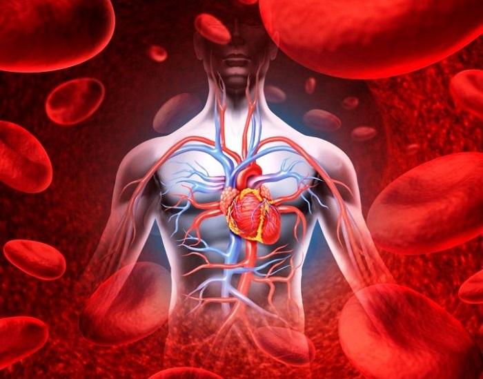 a magas vérnyomás kezelésében gyógyszereket alkalmaznak a magas vérnyomás korai megelőzése és kezelése