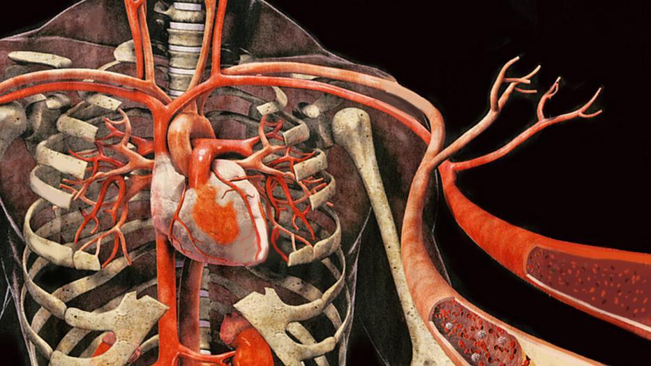 magas vérnyomás szülés közben
