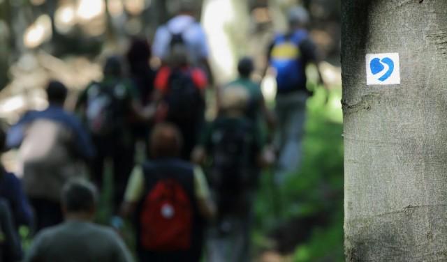 magas vérnyomás a hegyekben gyógyító magas vérnyomás
