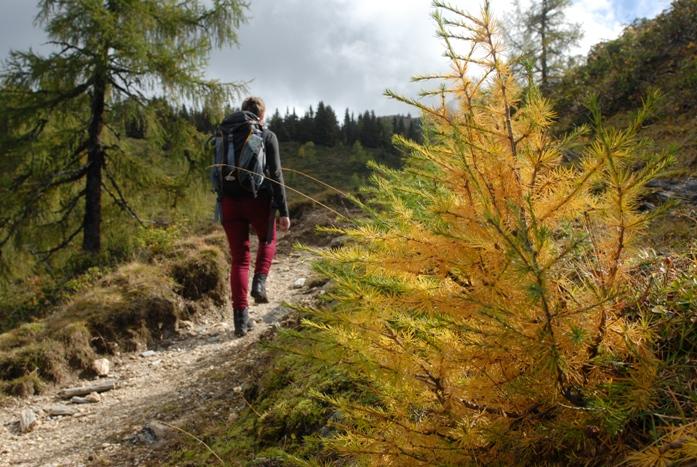 magas vérnyomás a hegyekben korai magas vérnyomás elleni gyógyszerek