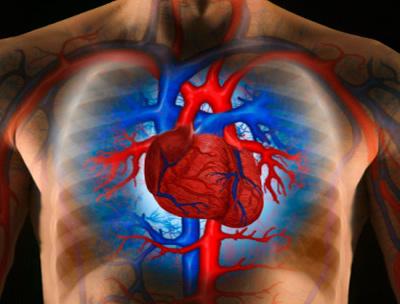 a teljes igazság a magas vérnyomásról szóló véleményekről hipertónia tünetei gyermekeknél