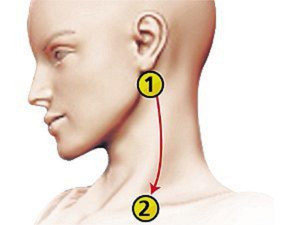 vérkép a hipertónia szempontjából magas vérnyomás 2 fokos kockázat 4 CHS 2