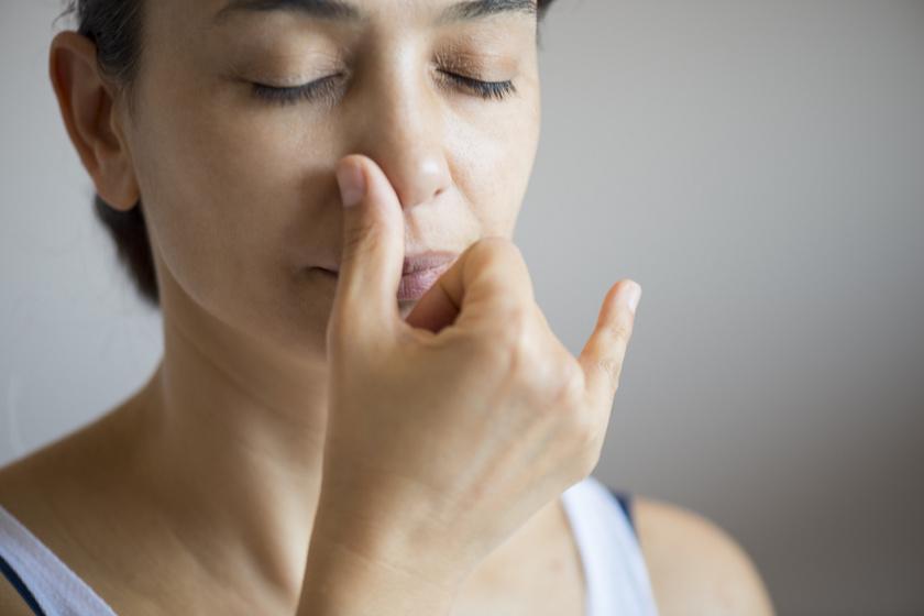 a csipkebogyó segít a magas vérnyomásban