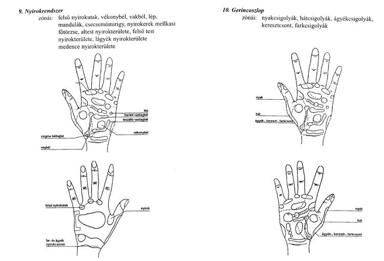 reflexológia magas vérnyomás esetén