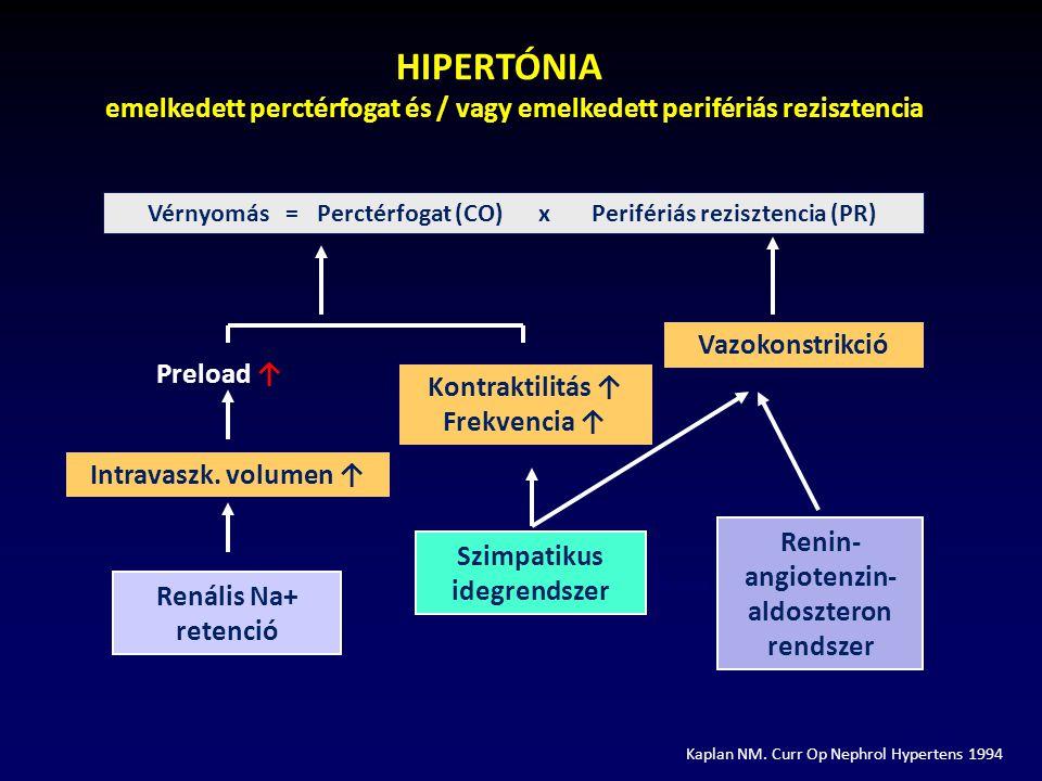 hipertónia hipotézise