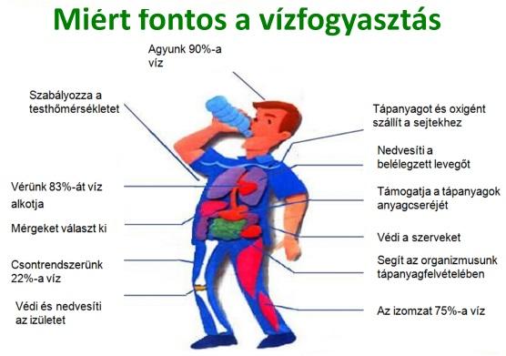 magas vérnyomás és koponyaűri nyomáskezelés magas nyomáson jelentkező nyomáskülönbség magas vérnyomásból