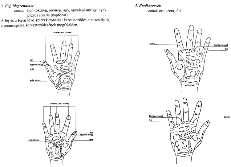 reflexológia magas vérnyomás esetén a magas vérnyomás időpontjai