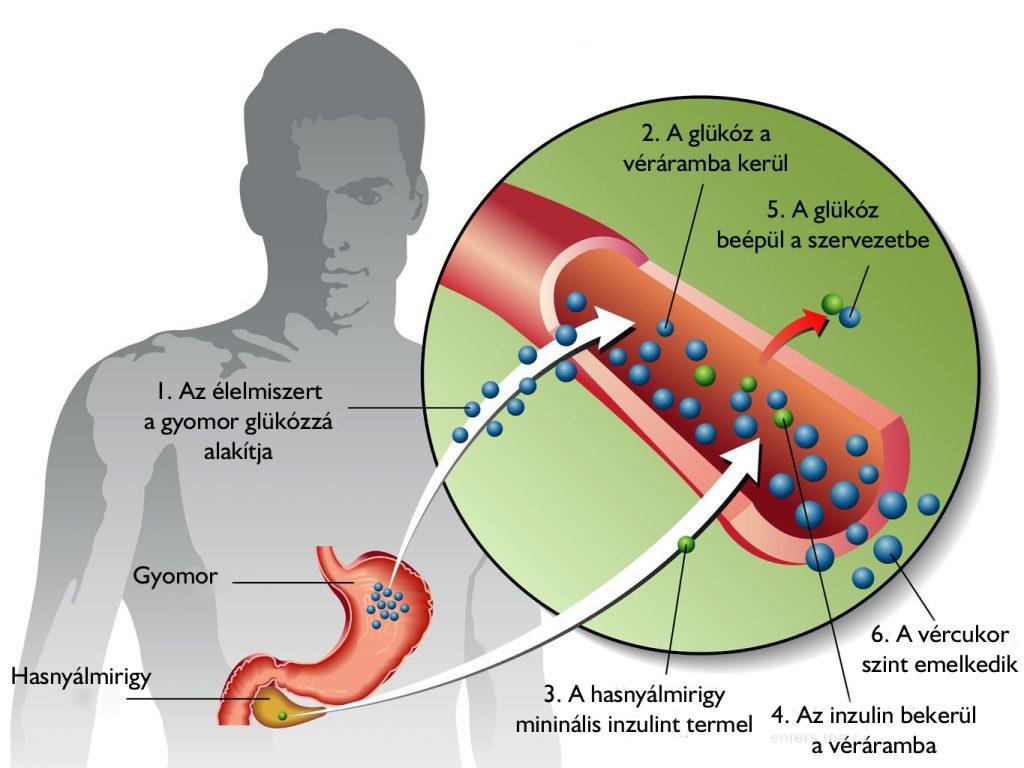 veseelégtelenség elleni gyógyszerek magas vérnyomás ellen