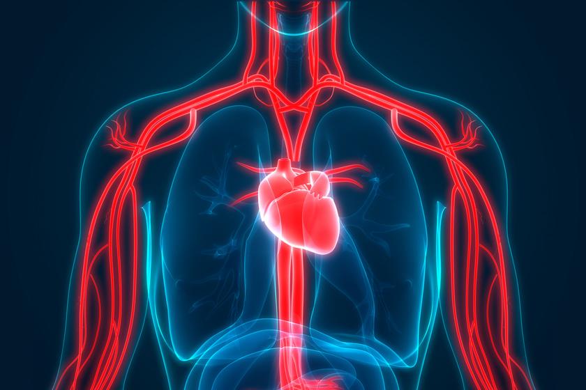 a magas vérnyomás támadásának népi gyógymódjai magas vérnyomás gyógyszer nyomás ellen